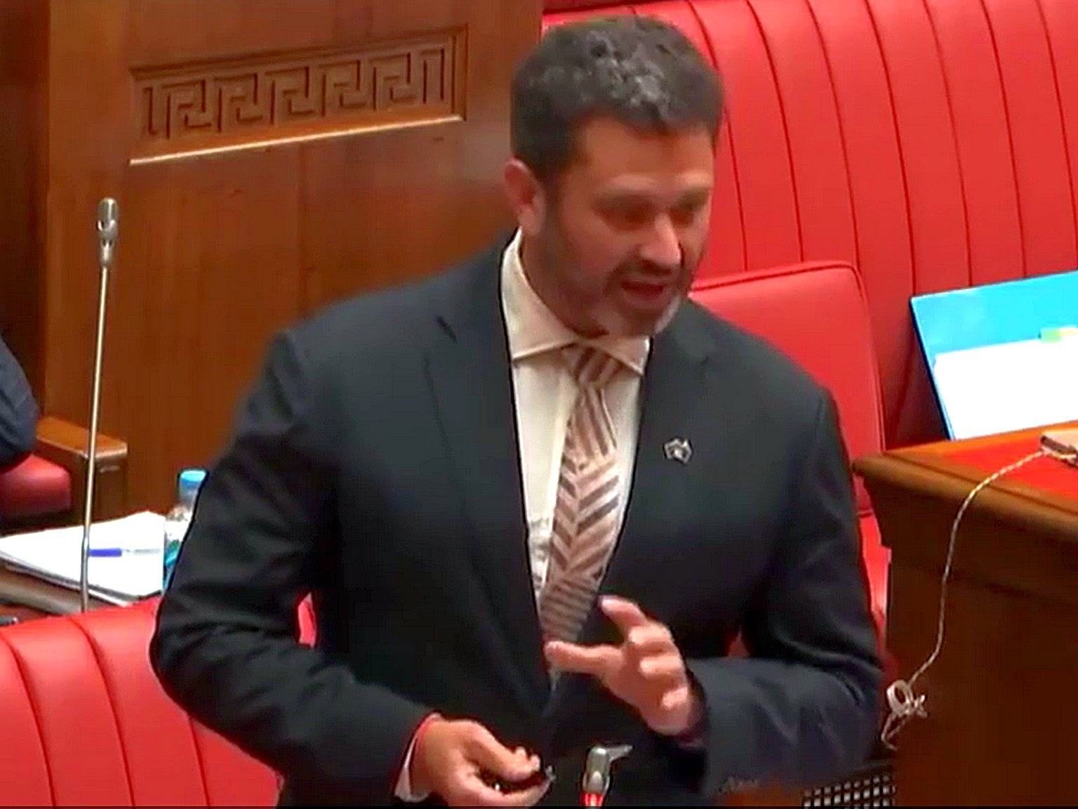 Kyam Maher delivers speech on VAD